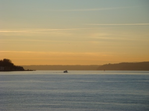 Puget Sound is especially vulnerable to Ocean Acidification
